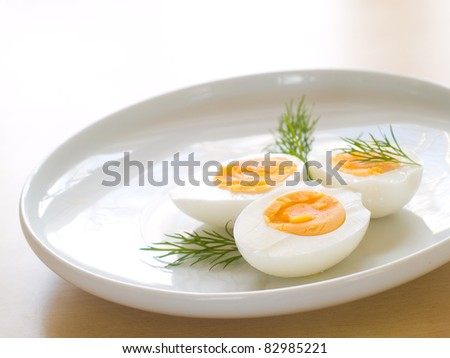Cooked egg  on white plate with dill - stock photo