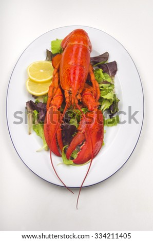 cooked lobster with salad and lemon slice on a plate - stock photo