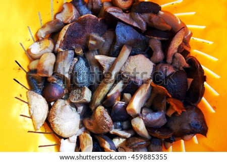 Cooked mushrooms. Tasty vegetarian meal. Overhead view. - stock photo