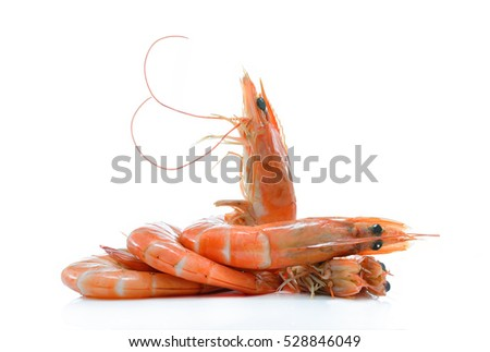 Cooked shrimps,prawns isolated on white background