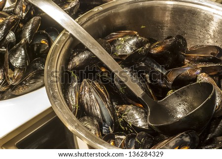 Cooker with stewed mussels wine and spices - stock photo