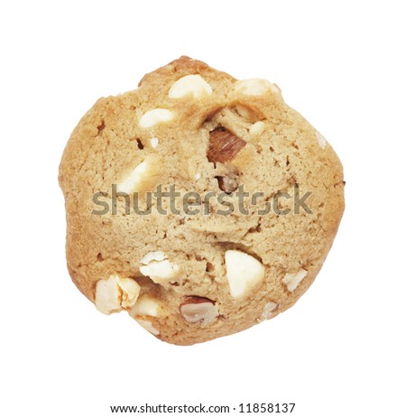 Cookie Biscuit With White Chocolate And Macadamia Nuts, Plain Background - stock photo