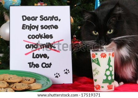 Cookies and Milk for Santa 1 - stock photo