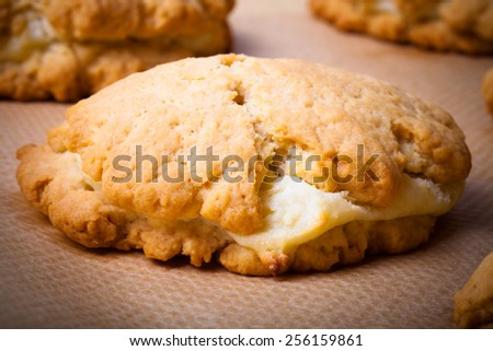 Cookies with cottage cheese - sochnik on baking paper. Toned.