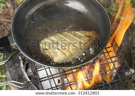 cooking fish frying in oil on the fire on camping  in the forest. - stock photo