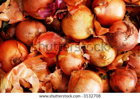 COOKING ONIONS - stock photo