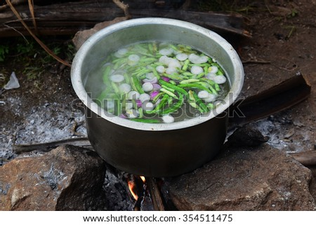 Cooking vegetables outdoors at Suruli falls, Tamil Nadu. Food for lunch. Vegetable soup. - stock photo