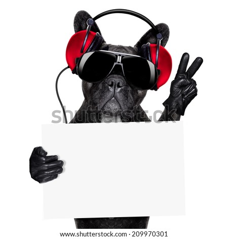 cool dj dog listening to music holding a white and blank banner or placard with peace or victory fingers - stock photo