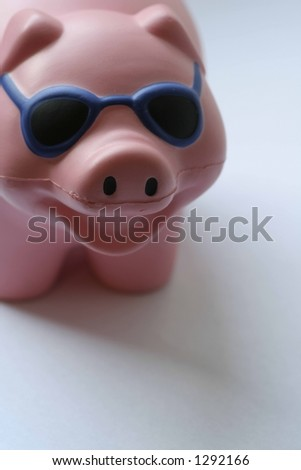 Cool Pig - stock photo