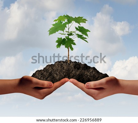 Cooperation growth business symbol as two hands holding up a heap of earth with a tree sapling growing. - stock photo