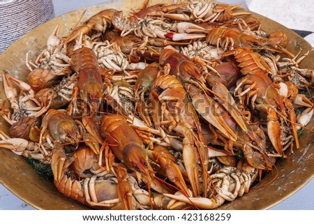 Copper plate with boiled red crawfishes, dill, vintage toning - stock photo