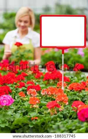 Copy space for your advertisement. Close-up of copy space on the commercial sign with woman working with flowers on the background - stock photo