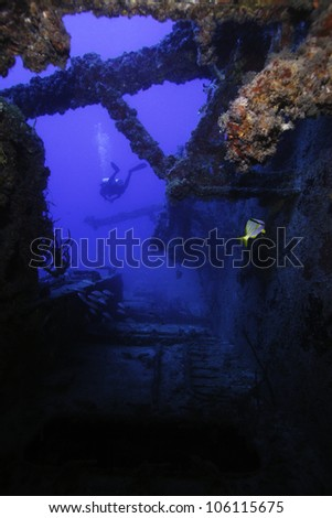Coral growth on the USCG Bibb in Key Largo, Florida. an artificial reef in the John Pennekamp State Park. With a technical diver swimming alongside the wreck - stock photo