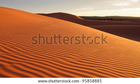 Coral pink sand dunes at sunset - stock photo