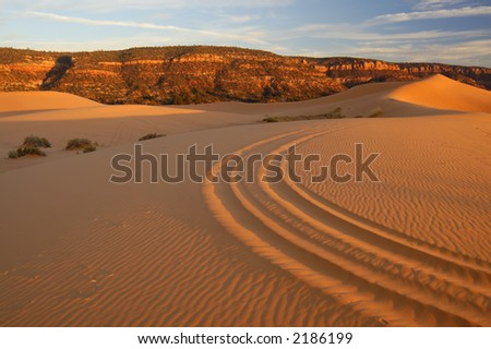 Coral Pink Sand Dunes at sunset. Pink dunes with ATV (OHV) tracks leading into the  sinuous dune shape with blue sky above. - stock photo