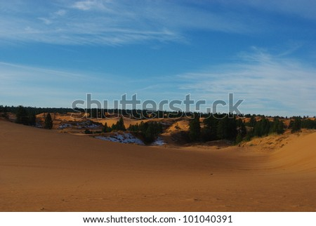 Coral Pink Sand Dunes in the early morning, Utah - stock photo