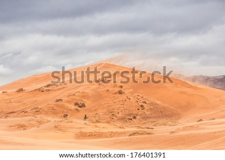 coral pink sand dunes state Park - stock photo