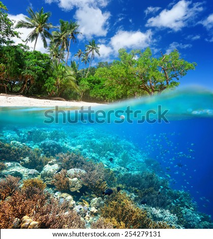 Coral reef, beautiful  island and wild beach, traveling along Asia, active lifestyle concept - stock photo