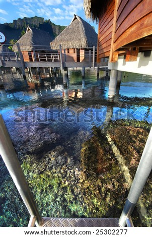 Coral Reef Below Bungalow Dock, Island of Moorea, French Polynesia - stock photo