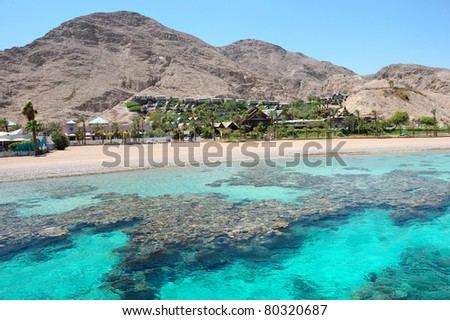 Coral reef in the Gulf of Eilat Red Sea - stock photo