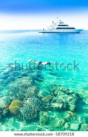 Coral Seascape - stock photo