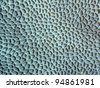 Coral texture - stock photo