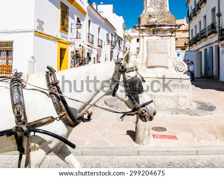 CORDOBA, SPAIN - MAY 08: horse carriage on May 08, 2015 in Cordoba, Spain. The historic centre was named a UNESCO World Heritage Site.
