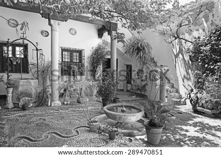 CORDOBA, SPAIN - MAY 26, 2015: The traditonal green yard (pacio) of house Casa de los Luna on the Plaza de San Andres square erected in year 1544. - stock photo
