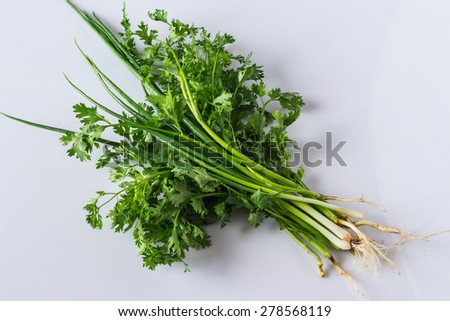 Coriander and onion isolated on white background - stock photo