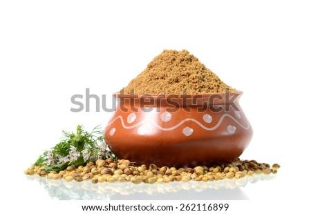 Coriander seeds, Fresh Coriander and Powdered coriander isolated on white background. - stock photo