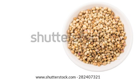 Coriander seeds in white bowl over white background