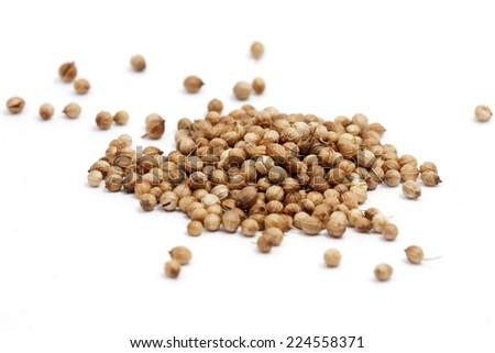 coriander seeds on white background - stock photo