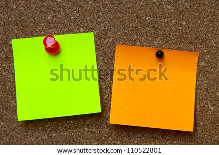 cork bulletin board with two sheets for notes