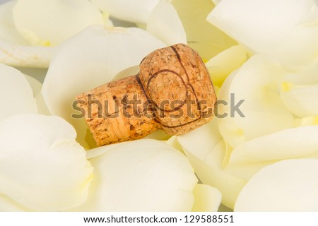Cork from champagne isolated with rose leaves - stock photo