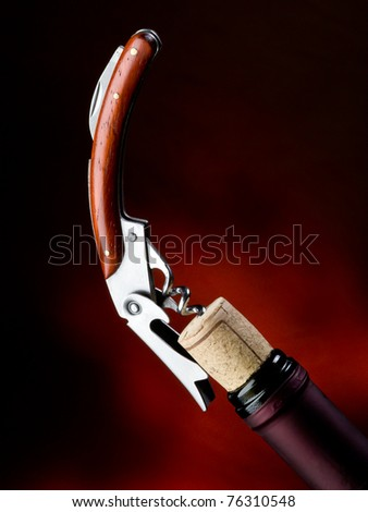 corkscrew with bottle - stock photo