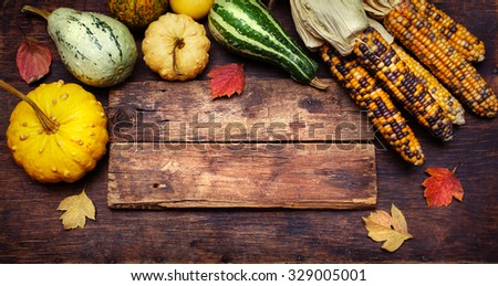 Corn and Pumpkins on a wooden board with copyspace . Thanksgiving day concept - stock photo