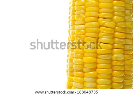 corn background, macro closeup  - stock photo