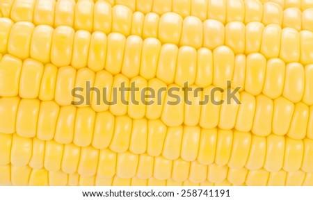 corn background, macro closeup - stock photo
