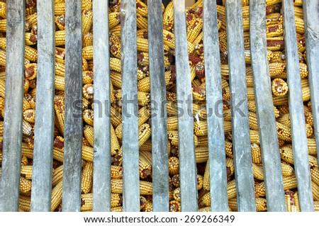 Corn barn. - stock photo
