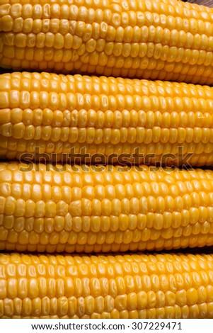 Corn close-up. Corn grains. Corn background. - stock photo