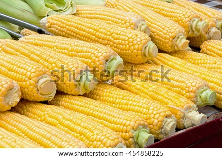 Corn cob ready for sale at marketplace - stock photo