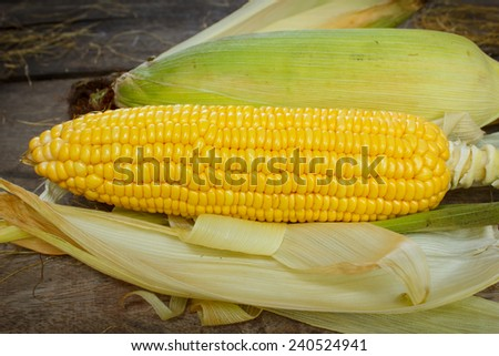 Corn cobs on wood background. - stock photo
