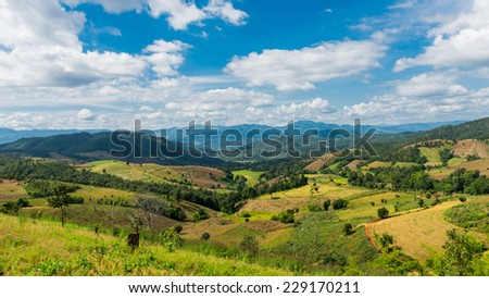 Corn field and rice field over the mountain range in thailand