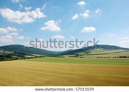 Corn field and sky with clouds, mountains background - stock photo