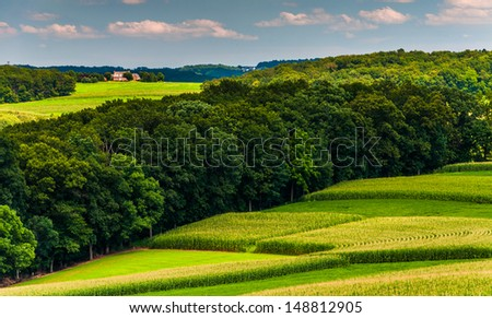 Corn fields and hills in rural Southern York County, Pennsylvania. - stock photo