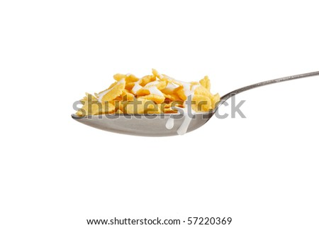 Corn flakes on the spoon with milk