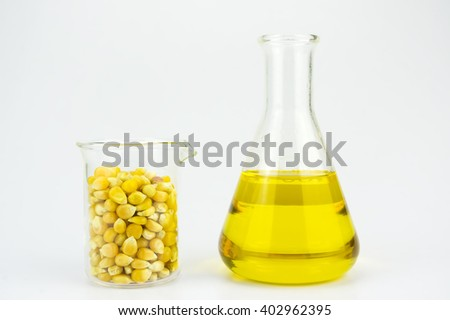 Corn generated ethanol bio-fuel with test tubes on white background-Agriculture concept