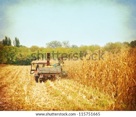 corn harvesting started - stock photo