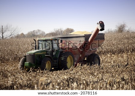 Corn in the Wagon - stock photo