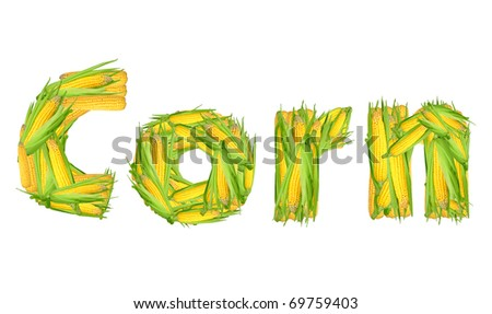 Corn isolated - stock photo